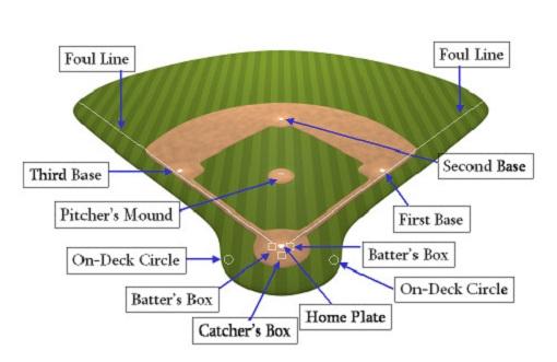 vị trí của các VĐV bóng chày