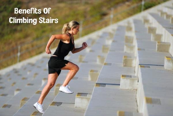 leo cầu thang có giảm cân không