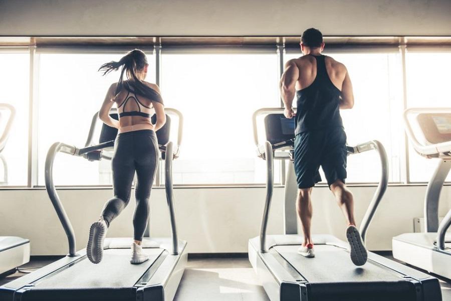 bài tập fitness