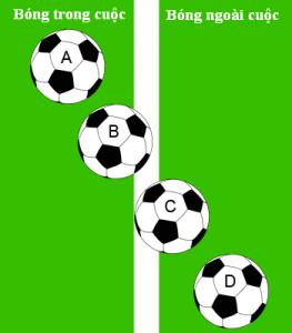 bóng đá 7 người